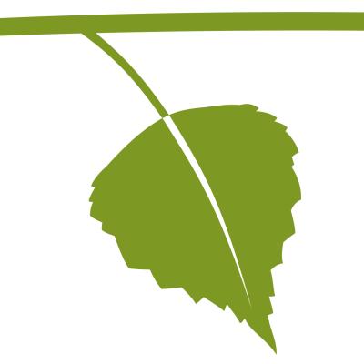 Birkenblatt für Logo Birkner Wintergärten (Entwurf: Andreas Kuhrt 2008)