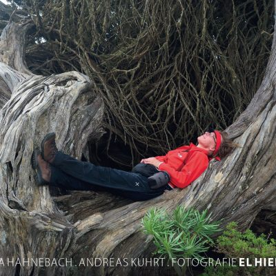 Kalender Fotografie El Hierro 2019: Im Wacholderwald El Sabina (Foto: Andreas Kuhrt 2018)